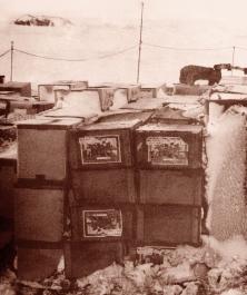 南極昭和基地の写真